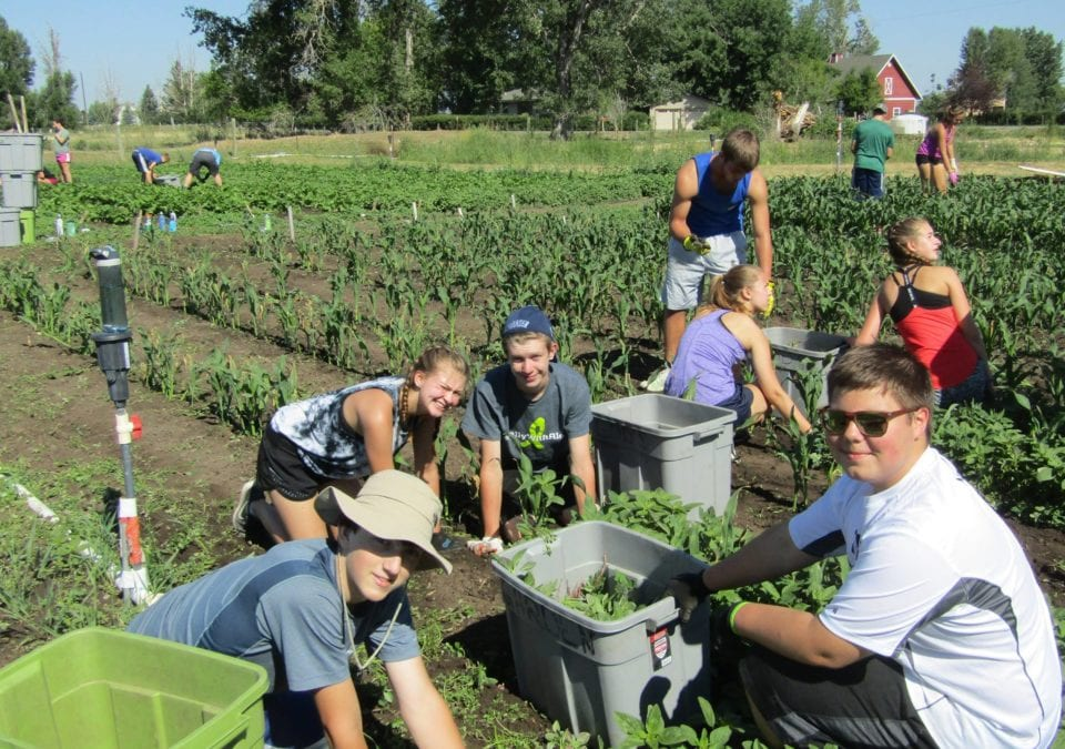 Gardening at Gallatin Valley SERVE