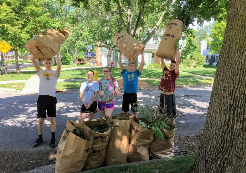 Yard Work in Grand Rapids MI